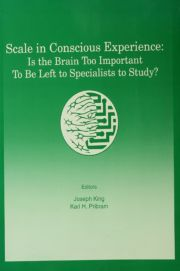Scale in Conscious Experience: Is the Brain Too Important To Be Left To Specialists To Study?
