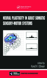 Neural Plasticity in Adult Somatic Sensory-Motor Systems