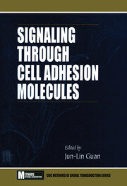 Signaling Through Cell Adhesion Molecules