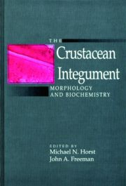 The Crustacean Integument: Morphology and Biochemistry