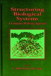 Structuring Biological Systems: A Computer Modeling Approach