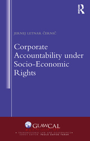 Corporate Accountability under Socio-Economic Rights