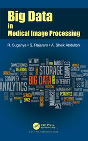 Big Data in Medical Image Processing