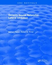 Revival: Sensory Neural Networks (1991)