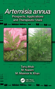 Artemisia annua: Prospects, Applications and Therapeutic Uses