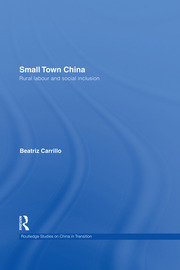 Small Town China: Rural Labour and Social Inclusion