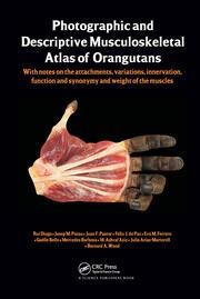 Photographic & Descriptive Musculoskeletal Atlas Orangutans - 1st Edition book cover