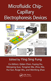 Microfluidic Chip-Capillary Electrophoresis Devices
