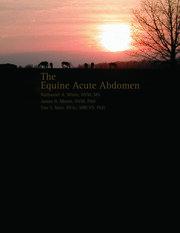 Equine Acute Abdomen