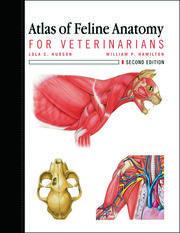 Atlas of Feline Anatomy For Veterinarians